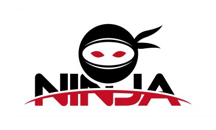 #AgencyBlog: the Digital Ninja